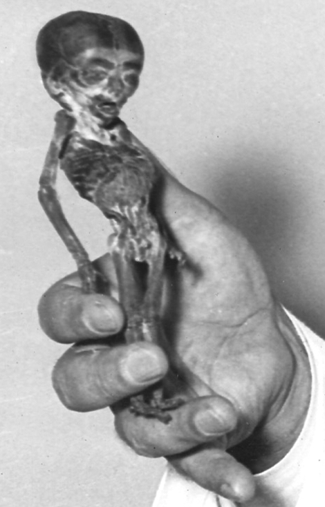 A six-inch tall mummy known as the Ata Boy