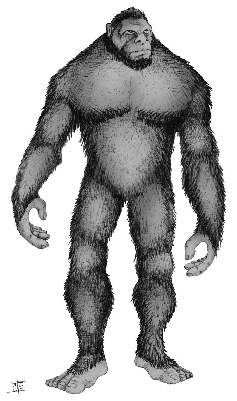 resized Bigfoot