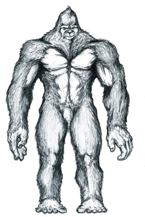 resized Sasquatch