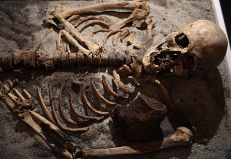 A skeleton from a suspcted vampire burial site