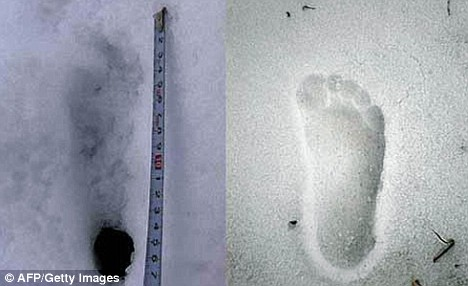 In 2008, a group of Japanese explorers stumbled upon these inhuman tracks while hiking across the Himalayas. Source Credit: http://www.dailymail.co.uk/news/article-1079091/Pictured-Yeti-footprints-adventurers-Nepal.html