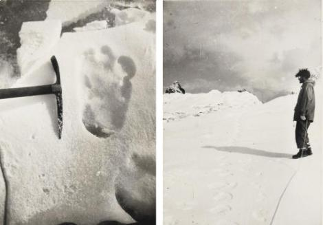 Pictured on the left, the famous Shipton Snowman Track, discovered by mountain climber Eric Shipton while he was climbing Mount Everest. Source Credit: http://www.cryptomundo.com/cryptozoo-news/shipton-cast/